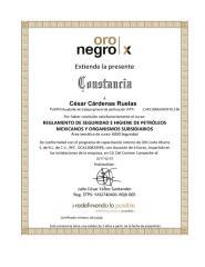 Oro Negro Interno Reglamento de Seguridad e Higiene de Petróleos Mexicanos y Organismos Subsidiarios.pdf