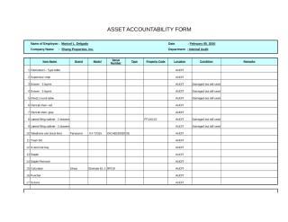 Asset accountability form-RomVic Almeida.xls
